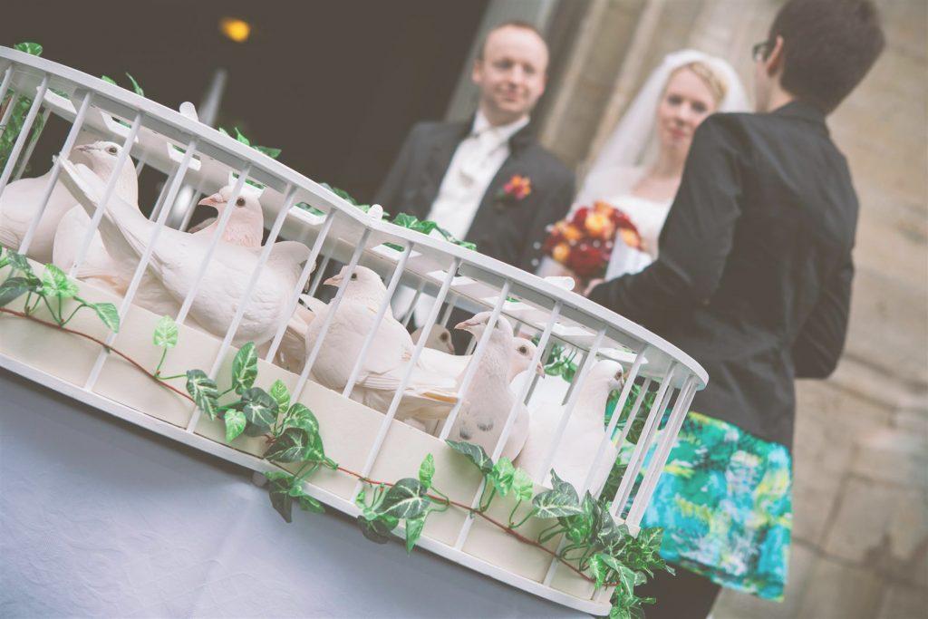 Ein Brautpaar freut sich auf die Tauben
